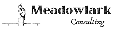 Meadowlark Consulting